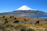 Cile - Il vulcano Parinacota