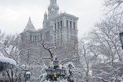 New York - Central Park con neve
