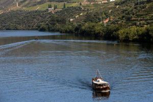 Oporto - Crociera sul douro