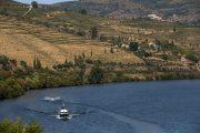Oporto - Crociera sul fiume Douro