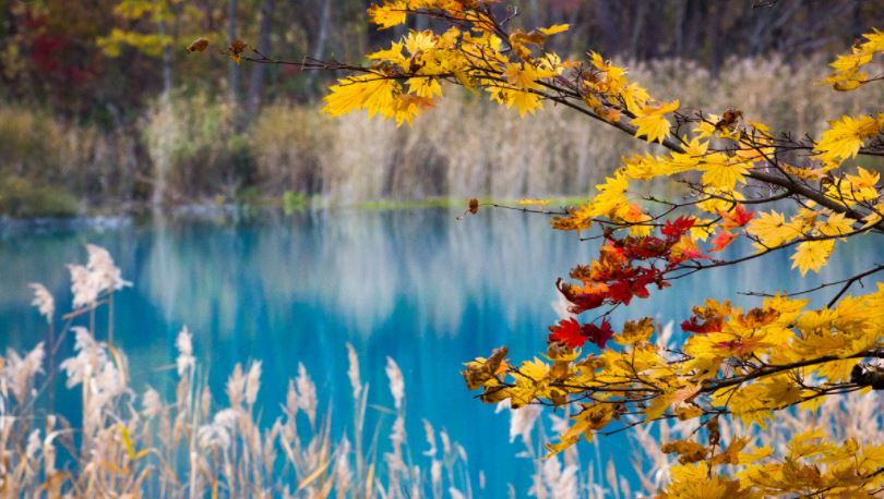 laghi colorati goshikinuma